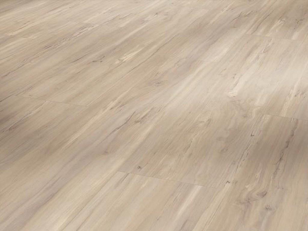 Jabloň lesná vyblednutá / PARADOR Basic 20 / P1710663