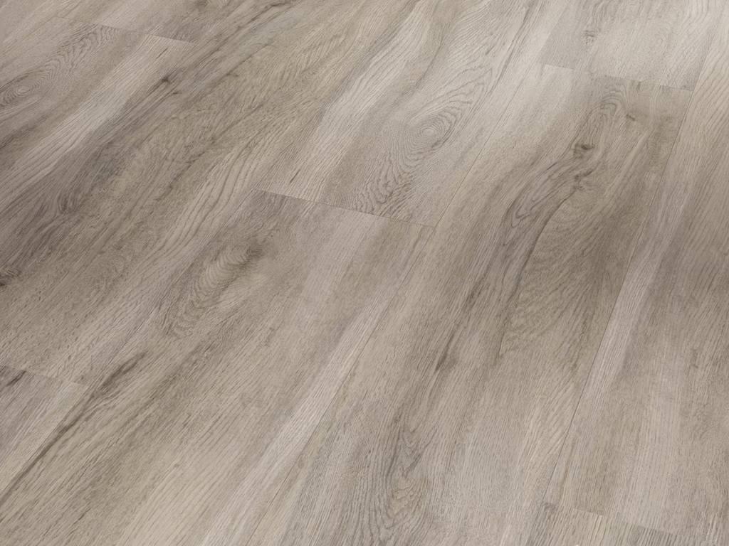 Dub pastelovo šedý / PARADOR Basic 30 / P1513441