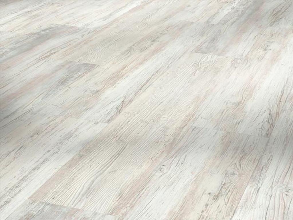 Pínia škandinávska biela / PARADOR Basic 30 / P1730627
