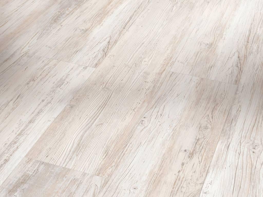 Pínia škandinávska biela / PARADOR Basic 4.3 / P1590993