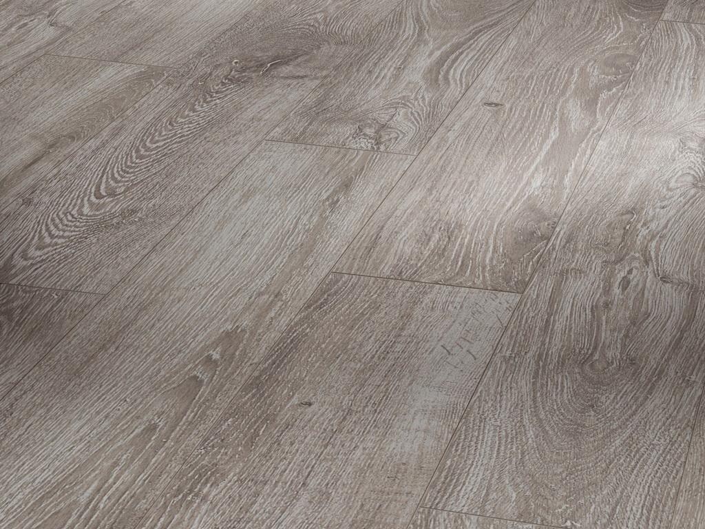 Dub šedý svetlý / PARADOR Basic 400 / P1426530