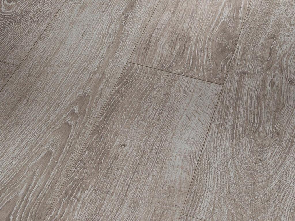 Dub šedý svetlý / PARADOR Basic 600 / P1593842